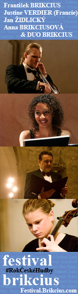 Festival Brikcius 2014 - a series of 6 Chamber Concerts in Prague
