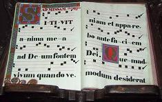 Example of Early Music Notation, held in Florence Italy - photo by Aaron Siirila