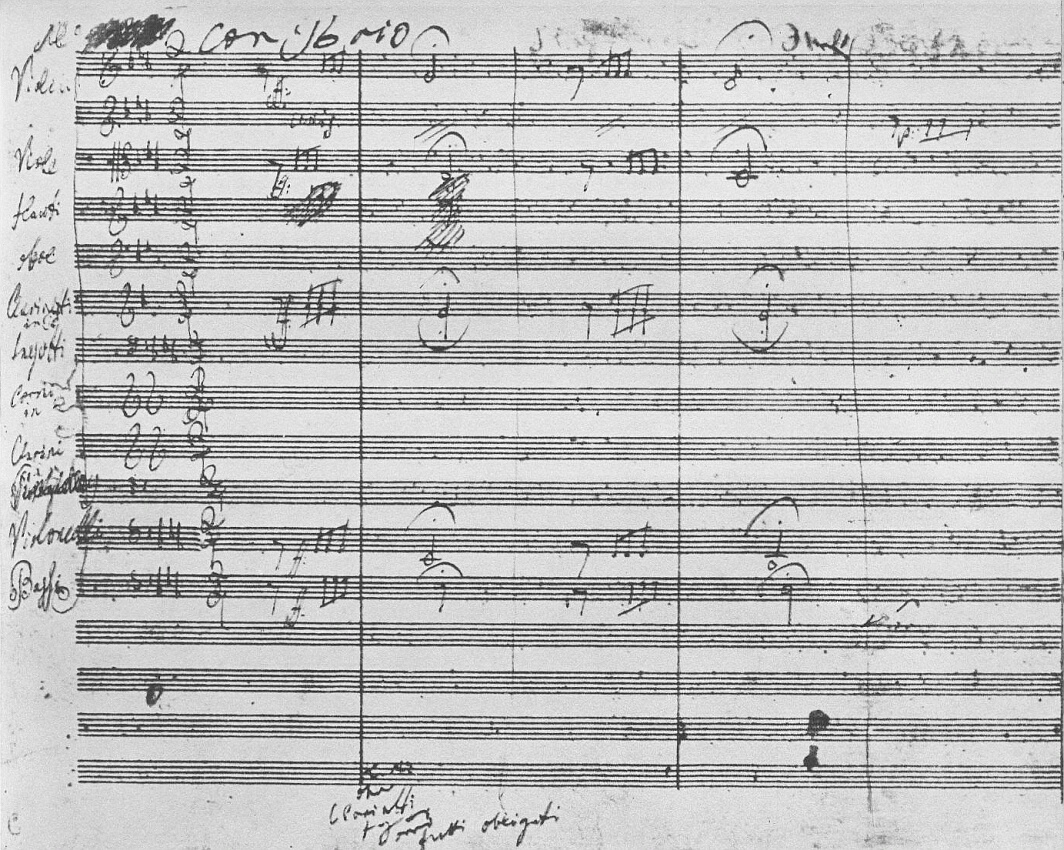 Timbral Analysis of Beethoven's 5th Symphony in C Minor Essay