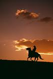cowboy riding into the sunset
