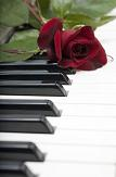 piano keyboard with flower