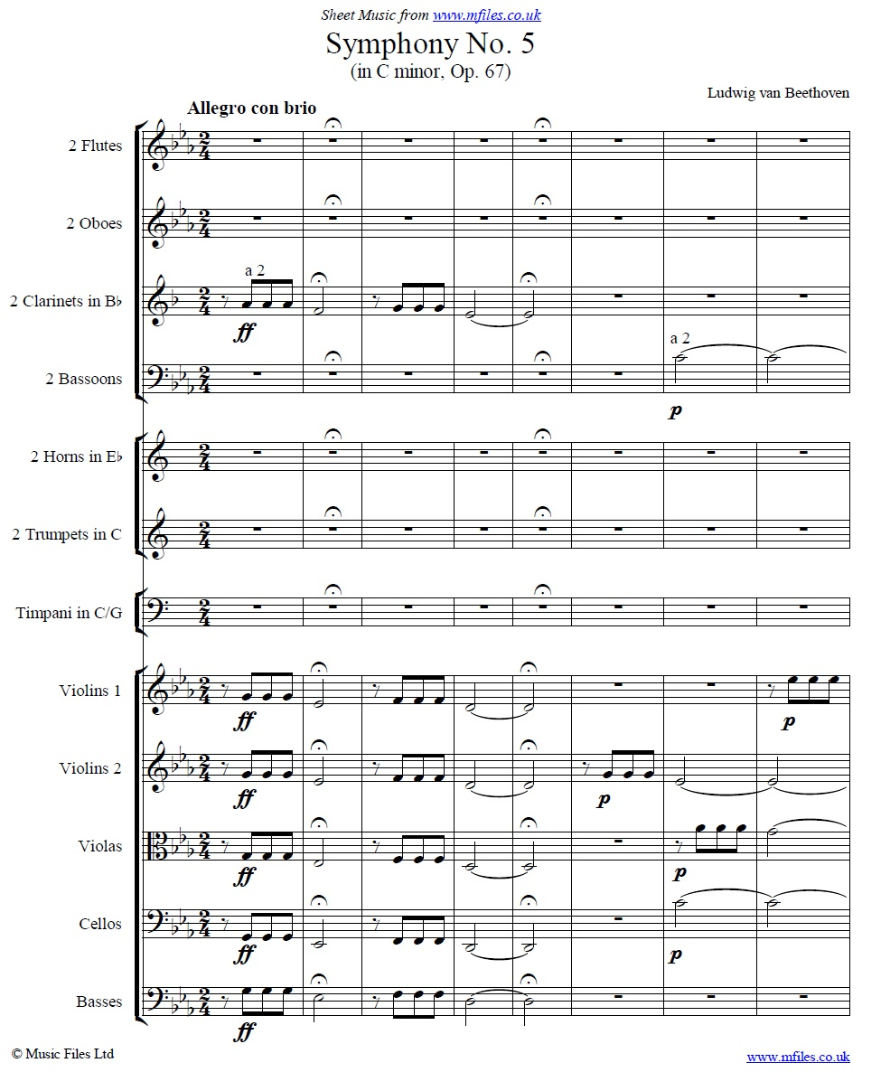 Beethoven's 5th Symphony 1st movement (orchestral score) - sheet music 1st page